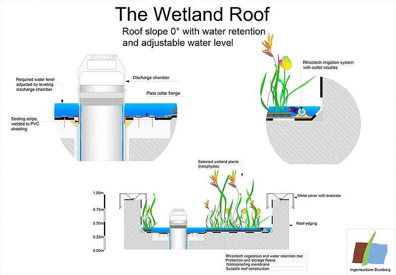 wetland green roof on a flat rooftop schematic principle