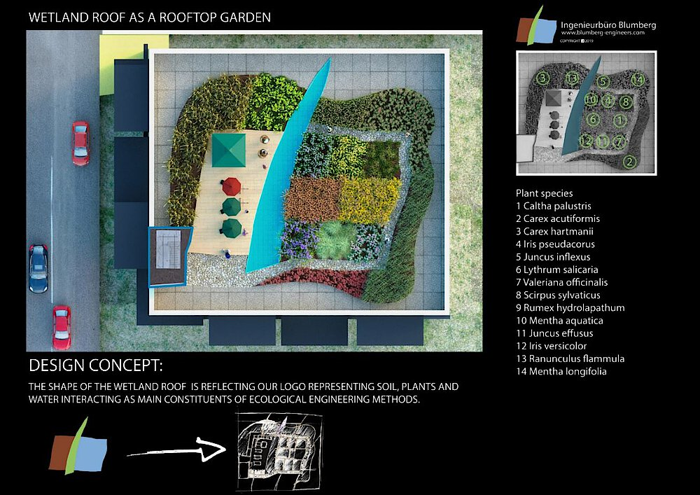 Concept of a Rooftop planted with marsh plants as an urban garden
