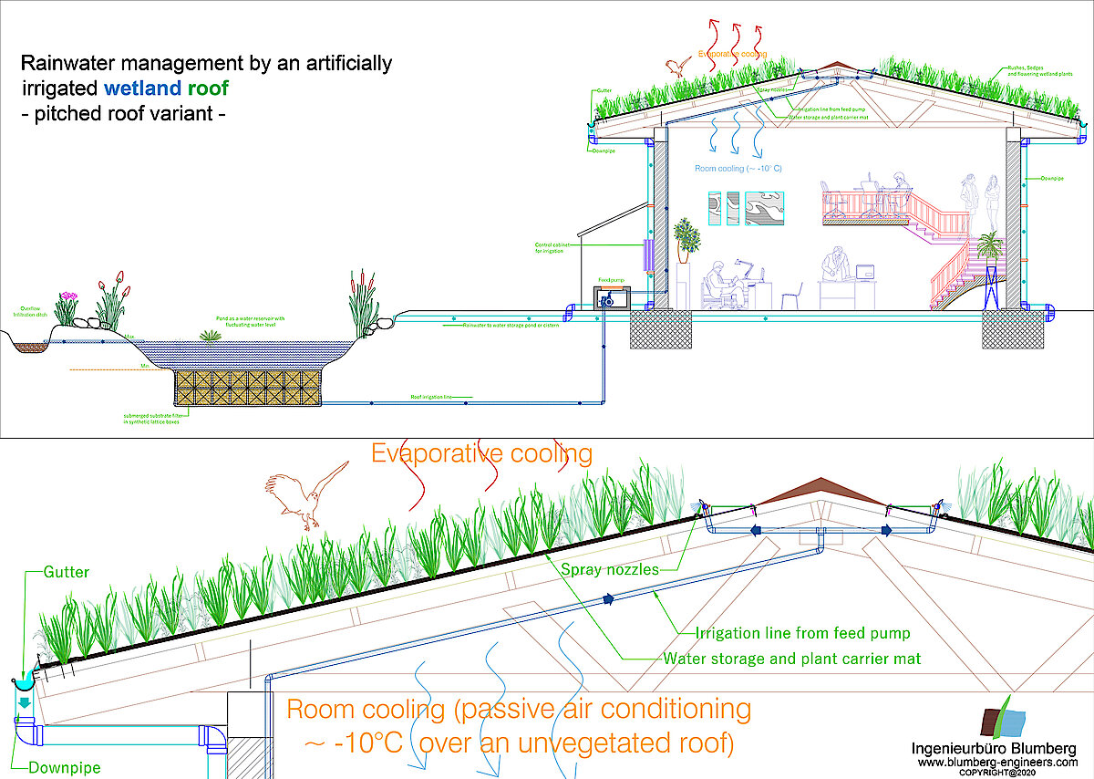 wetland roof and its water cycle on a sloped roof, wetland green roof