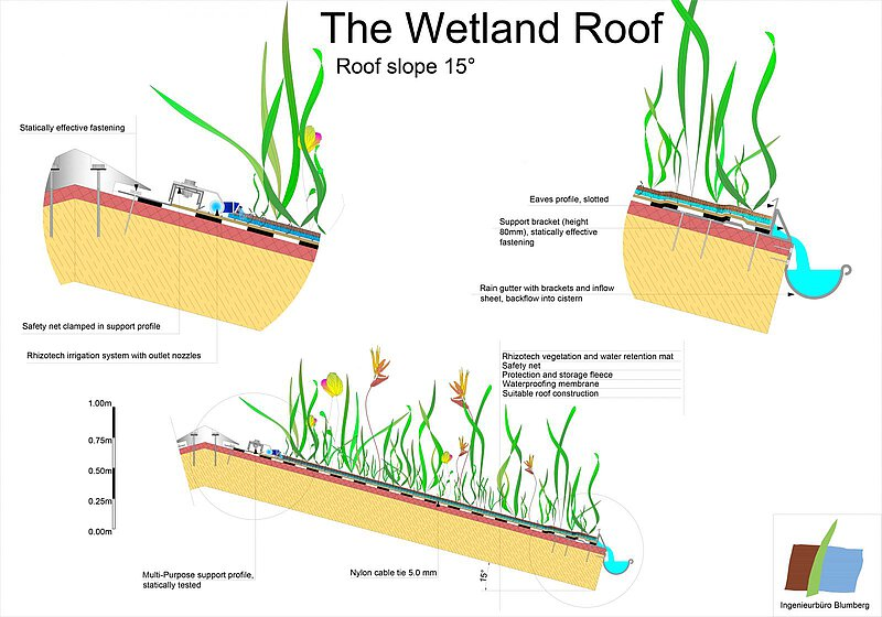 wetland green roof on a sloped rooftop schematic principle