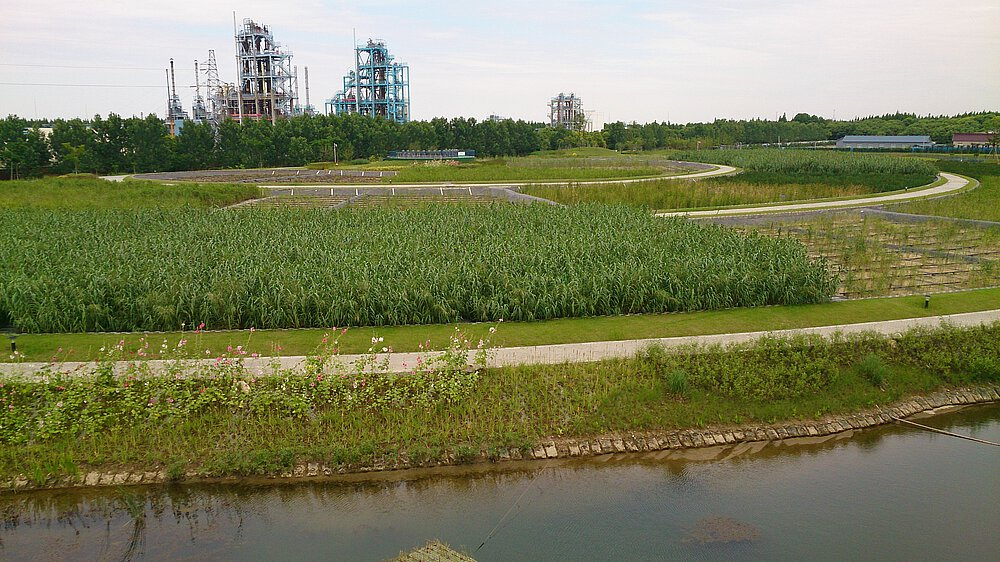 vertical constructed wetlands for industrial wastewater