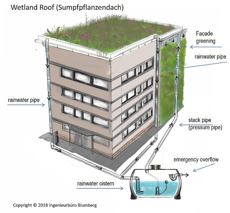 climate roof, wetland green roof, cistern, facade greening, functioning principle