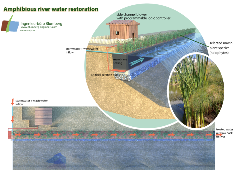 river water restoration, reed bed treatment, constructed wetland